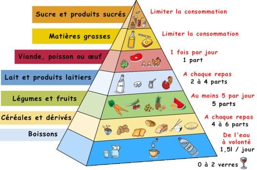 Pyramide de l'alimentation